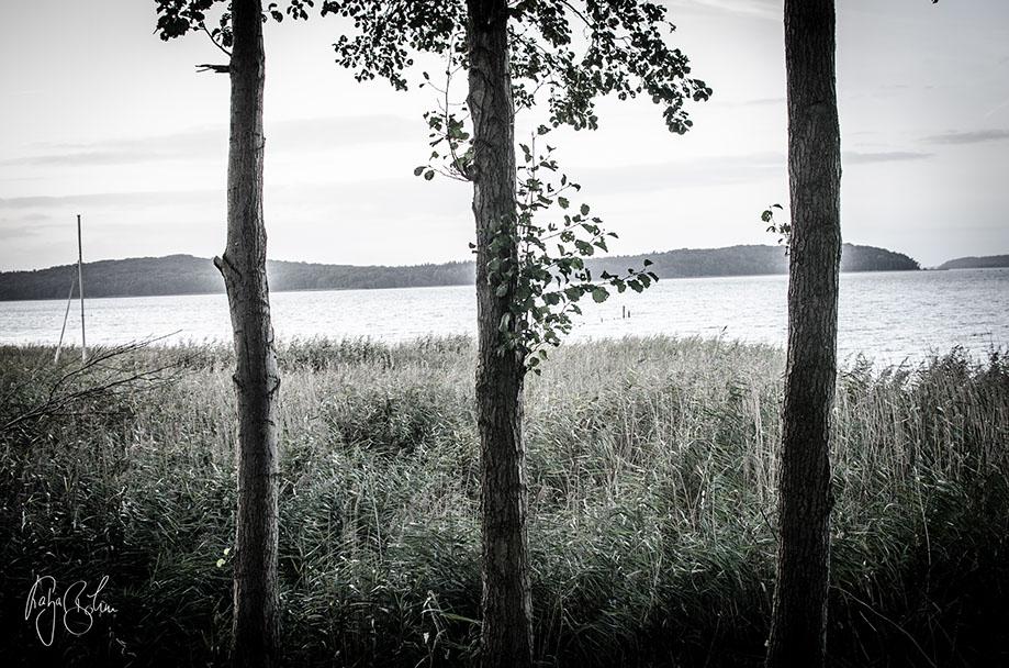 ©katjaboehm.de_Kaserne_DSCF0729